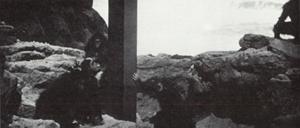 2001-2mono1.jpg