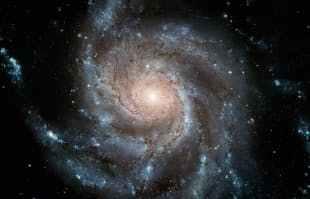 Fibonacci 3.jpeg